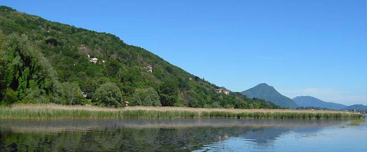 Was gibt es zu sehen am Lago Maggiore: Naturschutzgebiete